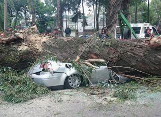 Las víctimas son tres adultos y un menor, quienes se encontraban en el interior del automóvil
