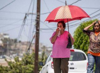 En alerta 8 entidades por calor infernal de hasta 45 grados