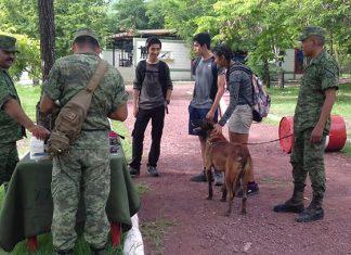 Acuden victorenses a 77 Batallón