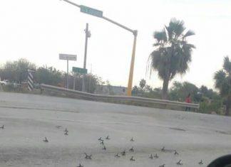 Y para cerrar el año… fuerte balacera en Reynosa