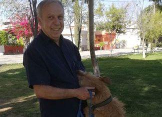 En la búsqueda de su mascota, rescató 24 perros de la calle