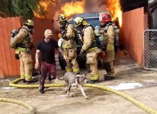 Hombre rescata a su perrito de un incendio