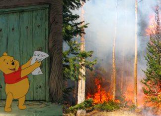 En Reino Unido se incendia bosque que inspiró Winnie Pooh
