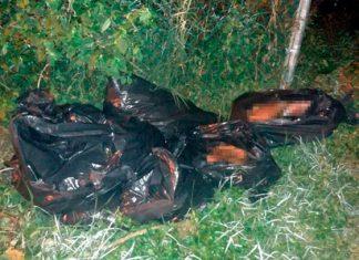 Encuentran 10 cadáveres y 9 bolsas con restos en una finca
