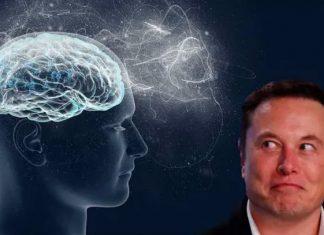 Elon Musk conectara el cerebro humano a máquinas con chips