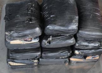 Decomisan más de un millón de dólares en droga en Puente Pharr