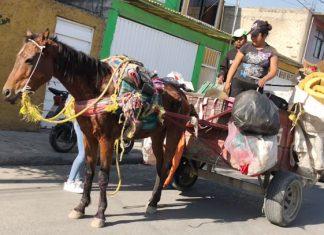 Gobierno de Reynosa ofrece opciones laborales a carretoneros