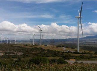 Aplazan inversión de 4 parques eólicos en Tamaulipas