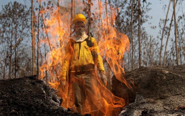 El cambio climático avivará los incendios
