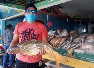 Impacto de Hanna abarata precios de pescados y mariscos