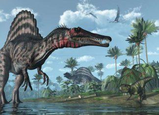 El nuevo descubrimiento sobre el Spinosaurus