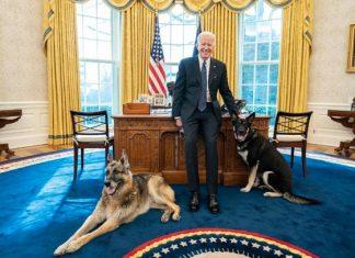Joe Biden presume el privilegio de sus 'lomitos': acceso total en la Casa Blanca